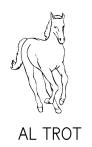 cavall-al-trot