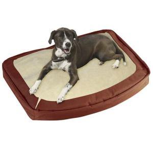 cama-para-perro-muy-resistente-bergan-3740-MLM64060009_3726-O